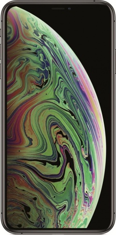Apple iPhone XS Max 512GB (серый космос)